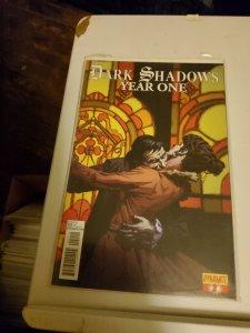 Dark Shadows: Year One #2 (2013)