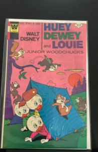 Huey, Dewey and Louie Junior Woodchucks #43 (1977)