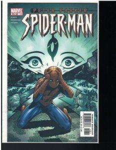 Peter Parker: Spider-man #48 (Marvel, 2002)