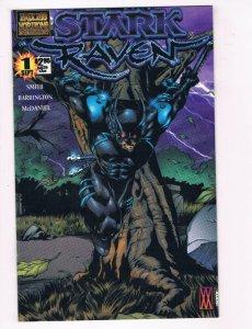 STARK RAVEN #1, NM, Ken Smith, McDaniel, Independent, 2000,more indies in store