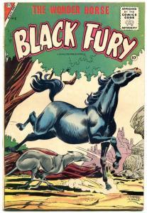 BLACK FURY THE WONDER HORSE #6 1956 CHARLTON COMICS FN