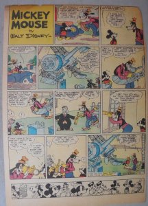 Mickey Mouse Sunday Page by Walt Disney from 8/21/1938 Tabloid Page Size
