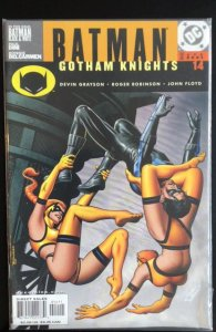 Batman: Gotham Knights #14 (2001)