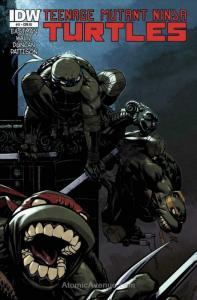 Teenage Mutant Ninja Turtles (5th Series) #11C VF/NM; IDW | save on shipping - d