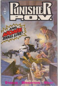 Punisher P.O.V #1