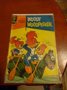Walter Lantz Woody Woodpecker #107 (1969)