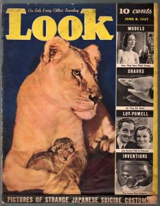 Look 10/2/1938-swimsuit cover-Rube Goldberg-Will Hays-censorship-G/VG