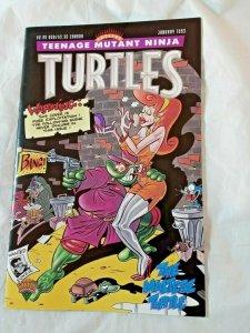 Teenage Mutant Ninja Turtles Special The Maltese Turtle #1 TMNT 1993 NM