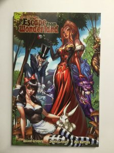 Grimm Fairy Tales Escape From Wonderland Tpb Softcover Sc Near Mint Nm Zenescope