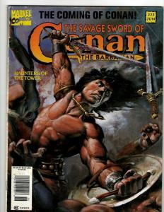 10 Savage Sword Of Conan Comics # 222 196 195 189 165 163 163 151 143 140 J394