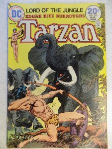 TARZAN OF THE APES # 229 DC KUBERT