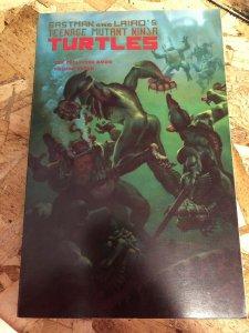 Teenage Mutant Ninja Turtles Collected Boom Vol 7 Mirage TP 1991