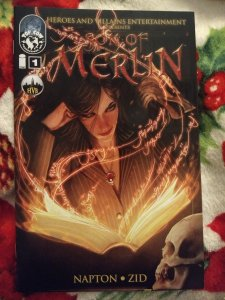 Son of Merlin #1 NM Variant cover B by Stjepan Sejic