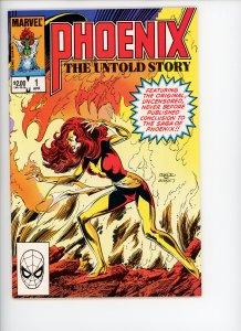 Phoenix The Untold Story  9.0 (our highest grade) 1984  Byrne art