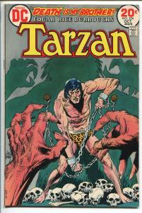 TARZAN #224 1973-DC-EDGAR RICE BURROUGHS-JOE KUBERT JUNGLE ART-SKULL-vf