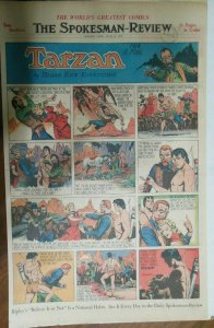 Tarzan Sunday Page #475 Burne Hogarth from 4/14/1940 Very Rare ! Full Page Size