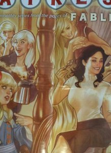 FAIREST Promo Poster, 22 x 34, 2012, VERTIGO Adam Hughes Unused 398