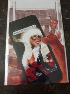 ​Amazing Spider-man #1 Adam Hughes Black Cat Virgin Variant NM