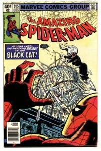 AMAZING SPIDER-MAN #205 comic book 1980-BLACK CAT-MARVEL VF