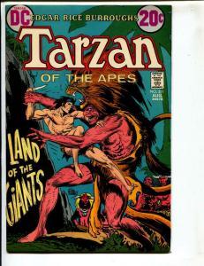 Tarzan-#211-1972-DC-BRONZE-AGE-Joe Kubert-NM-