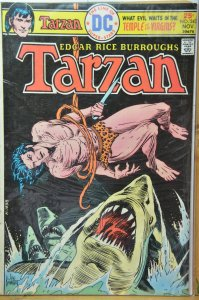 Tarzan #243 (1975) Classic Joe Kubert Cover !