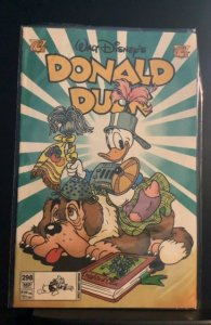 Donald Duck #298 (1996)