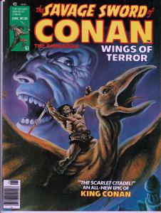 Savage Sword of Conan # 30- Early Conan Magazine - 7.0 or Better