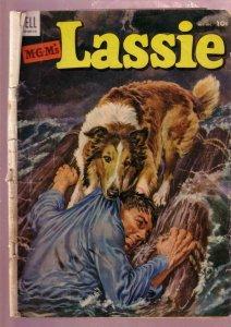 M-G-M'S LASSIE #13 1953-COLLIE DOG HERO ADVENTURE MOVIE FR