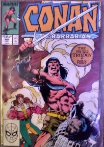 Conan the Barbarian #206, 207, 208 (1988) complete trilogy