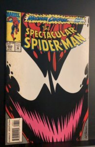 The Spectacular Spider-Man #203 (1993)