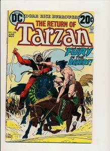 DC Comics The Return of Tarzan #220 ~ Fine  Fury in the Desert (596Jr)