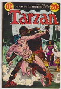 Tarzan #217