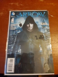Arrow (DE) #1 (2013)