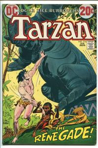 RETURN OF TARZAN #219 1973-DC-EDGAR RICE BURROUGHS-SHARK- KUBERT ART-vf