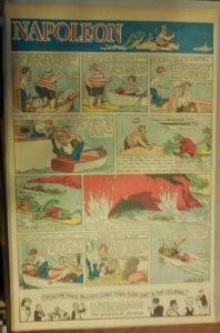 Napoleon the Dog Sunday by Clifford McBride from 6/18/1933 Full Page Size !
