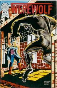 Werewolf (Blackthorne) #2 VF; Blackthorne | save on shipping - details inside
