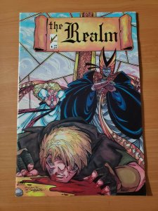 The Realm #4 1st Appearance of Deadworld ~ NEAR MINT NM ~ 1986 Arrow Comics