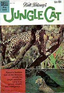Jungle Cat #1, VG (Stock photo)