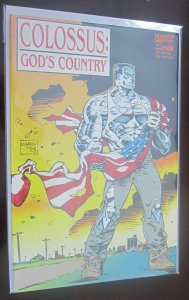 Colossus God's Country #1 TPB 8.5 VF+ (1994)