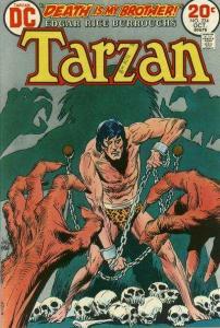 Tarzan (1972 series) #224, VF- (Stock photo)