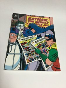Batman The Sunday Classics 1943-46 SC Soft Cover Oversized Kitchen Sink DC Comic