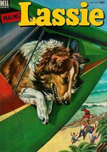 Lassie #11, Good (Stock photo)