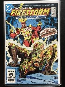 The Fury of Firestorm #19 (1984)