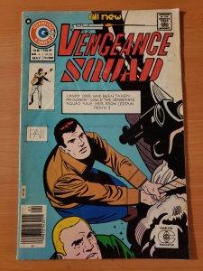 Vengeance Squad #6 (1976)