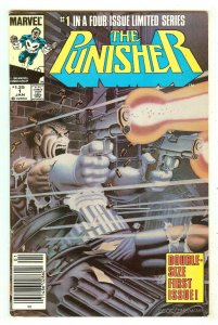 Punisher 1   Limited Series   Double Size