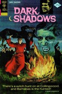 Dark Shadows (1969 series) #30, Fine (Stock photo)