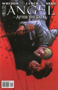 Angel: After the Fall #5C VF/NM; IDW | save on shipping - details inside
