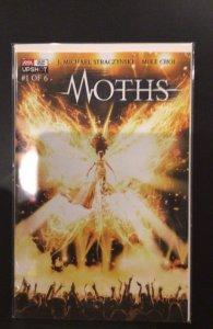 Moths:  1 of 6