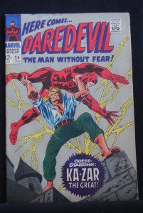 Daredevil 24, 6.0, Tongie Farm Collection