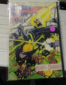 hearts of darkness graphic novel  ghost rider +wolverine+punisher+marvel